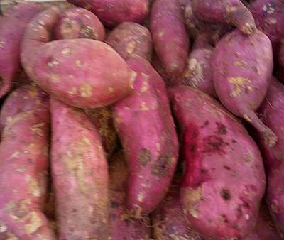 Photograph - Sweet Potatoes by Mudiama Kammoh