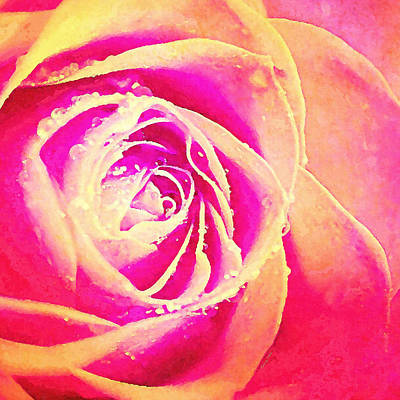 Sweet Romance - Rose  Art Print by Stacey Chiew