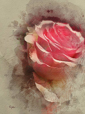 Digital Art - Sweet Rose by Paulette B Wright