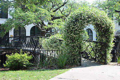 Savannah Live Oaks Photograph - Sweet Savannah Bridge by Carol Groenen