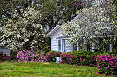 Photograph - Sweet Southern Spring by Linda Brown