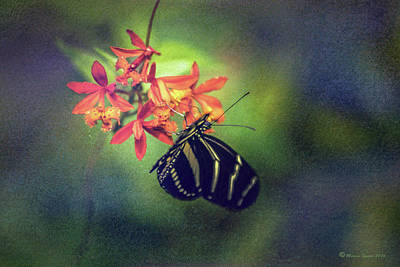 Fluttering Photograph - Sweet Times by Marvin Spates