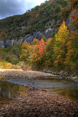 Art Print featuring the photograph Sweetgums At Steel Creek  by Michael Dougherty