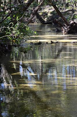 Photograph - Sweetwater Creek Reflections by Warren Thompson