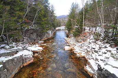 Swift River, New Hampshire  Art Print by Catherine Reusch Daley