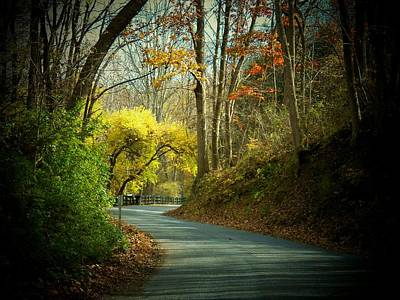 Photograph - Swift Shoal Road by Joyce Kimble Smith
