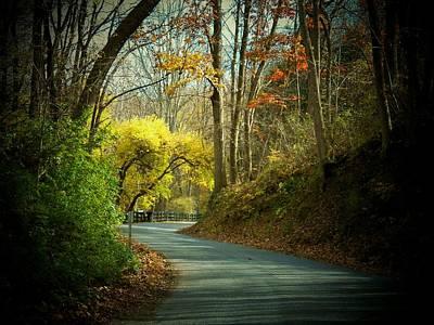 Photograph - Swift Shoal Road by Joyce Kimble Smith