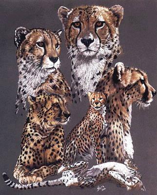 Cheetah Drawing - Swiftly by Barbara Keith