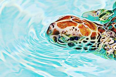 Photograph - Swimming Cutie by Tatiana Travelways