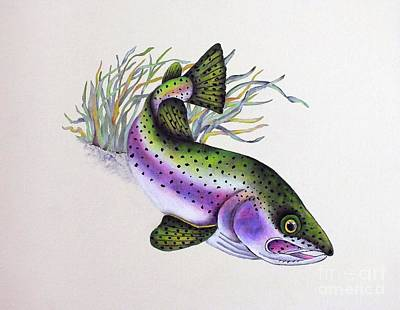 The Rolling Stones - Swimming Fish by Cindy Treger