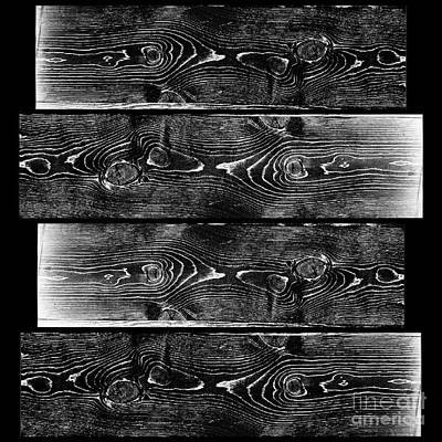Artist Working Photograph - Swimming In Black And White - Wood Grain Collage by Scott D Van Osdol