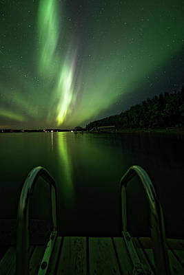 Photograph - Swimming With Aurora by Darcy Michaelchuk