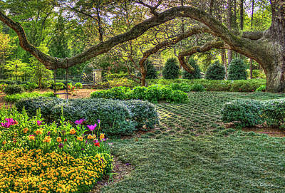 Photograph - Swing Swing Swung 2 Atlanta Buckhead Garden Art by Reid Callaway