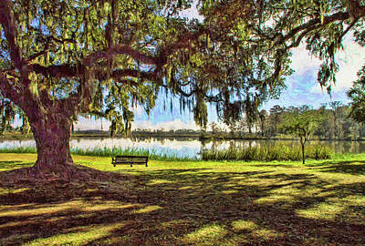 Photograph - Swing Under The Oaks by Sandra Anderson