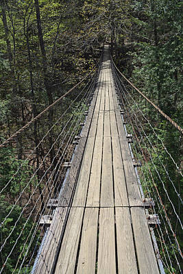 Swinging Bridge Falls Creek Falls State Park Art Print