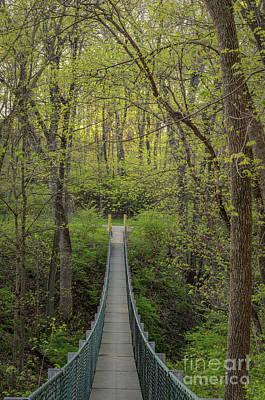 Photograph - Swinging Bridge In Spring by Tamara Becker