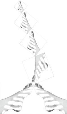 Digital Art - Swirling by Fei Alexander