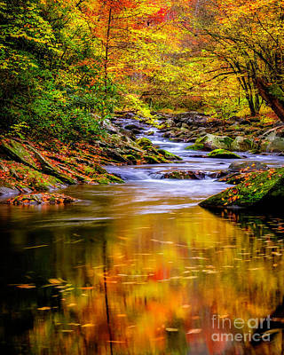 Photograph - Swirling Reflections Of Fall Colors by Madonna Martin