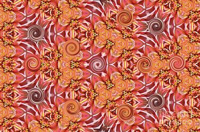 Photograph - Swirls Abstract by Debby Pueschel