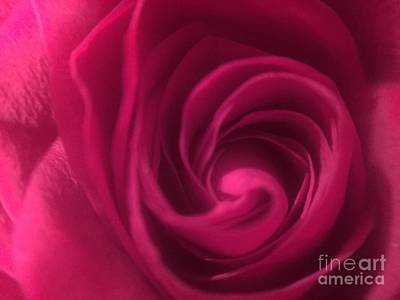 Photograph - Swirly by Jenny Revitz Soper