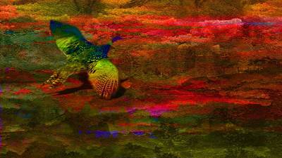 Pheasant Mixed Media - Swoop-semi Abstract by Mike Breau