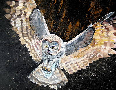 Swooping Drawing - Swooping Owl by Cathy Jacobs