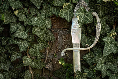Photograph - Sword And Vine by Sharon Popek