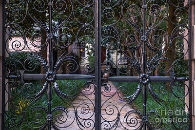 Photograph - Sword Gates Of Charleston by Dale Powell