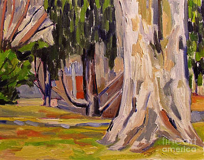 Sycamore At Millstone Art Print by Charlie Spear