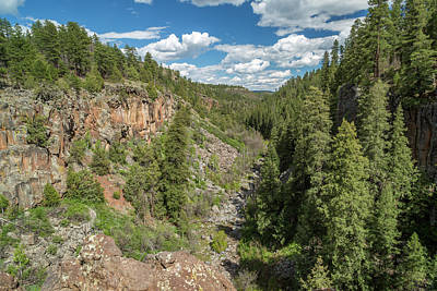 Mogollon Rim Photograph - Sycamore Canyon Rim, Arizona by Jon Manjeot