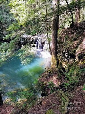 Photograph - Sycamore Falls by Rachel Hannah