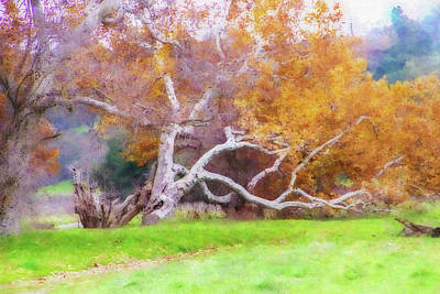 Autumn Landscape Mixed Media - Sycamore Grove 1 by Terry Davis