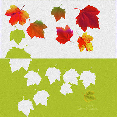 Digital Art - Sycamore Leaves Fall Fell Fallen by Robert J Sadler