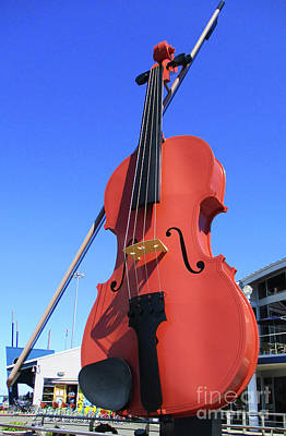 Photograph - Sydney Fiddle by Randall Weidner
