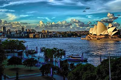 Photograph - Sydney Harbor And Opera House by Diana Mary Sharpton