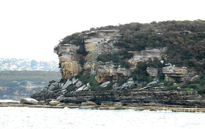 Photograph - Sydney Harbour Cliffs by Leanne Seymour