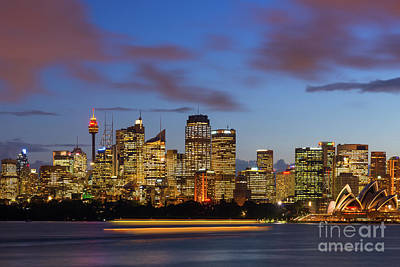 Photograph - Sydney Harbour Sunset by Andrew Michael