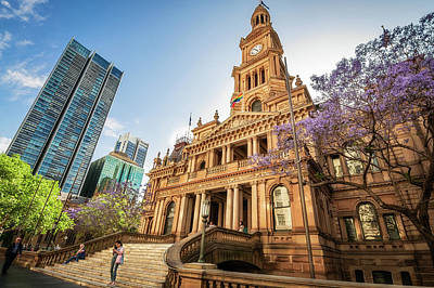 Photograph - Sydney Town Hall In Spring by Daniela Constantinescu