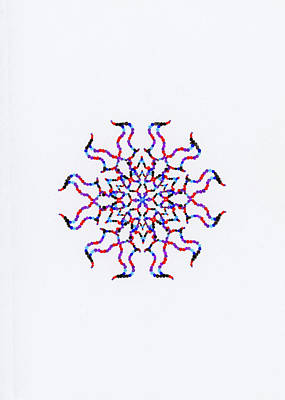 Drawing - Symbiosis by Tim Cranwill