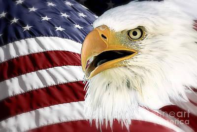 Symbol Of America Art Print