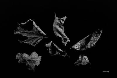Photograph - Symbol Of Change by Randi Grace Nilsberg