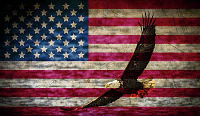Photograph - Symbol Of Freedom by Ray Congrove