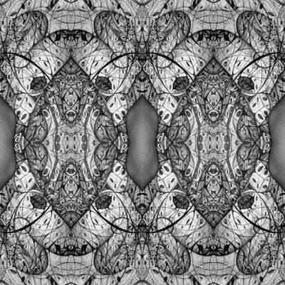 Digital Art - Symmetrical by Jack Dillhunt