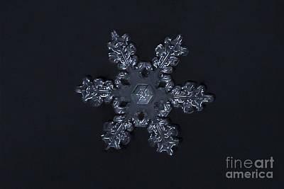 Winter Photograph - Symmetrical Snowflake by Carolyn Brown