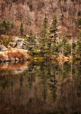 Trees Reflecting In Water Photograph - Symmetry by Heather Applegate