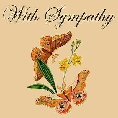 Drawing - Sympathy Gifts Butterfly Vintage Art Logo by Injete Chesoni