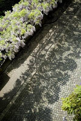 Vevey Photograph - Sidewalk Symphony by Colleen Williams