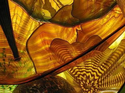 Photograph - Symphony In Gold  by Carolyn Jacob