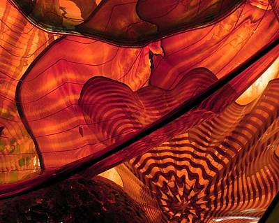 Photograph - Symphony In Orange by Carolyn Jacob