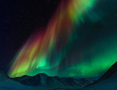 Dalton Highway Photograph - Symphony Of Northern Lights by Noppawat Tom Charoensinphon